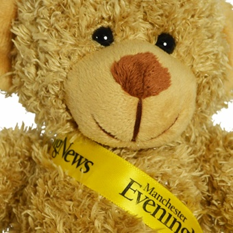 30cm_barney_bear_sash_biscuit_clup_1024