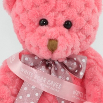 quilted-bear-blossom-pink-sash-clup-1024