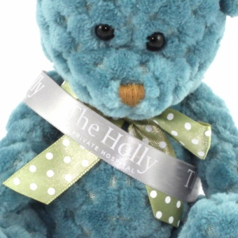 quilted-bear-storm-sash-clup-1024