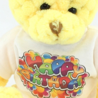 quilted-bear-sunshine-tshirt-clup-1024